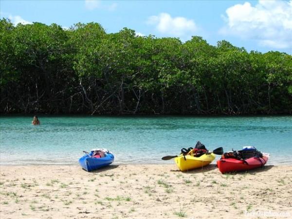 Punta Ballena Reserve