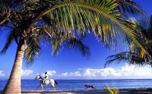 Horseback ride and Dunns River Falls. Montego Bay. Jamaica