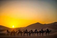 Sahara Desert Tours. Marrakech. Morocco