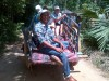 village tour by bullock cart, Sigiriya, Habarana a small village