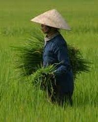 Adventure tour in Hanoi. 14 days Hanoi to Saigon Impression. Guided tour in Hanoi,Vietnam