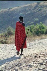 African Safari Tour. Masai