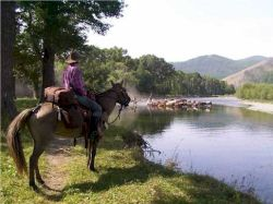 Private Guided Tours of Mongolia