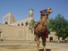 Uzbekistan private tour